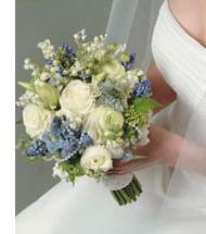 Wedding Planner Canada