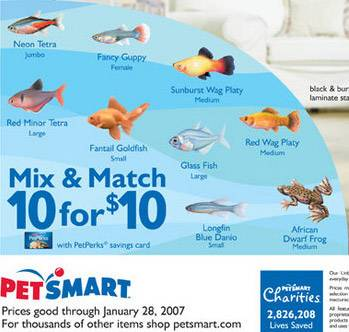 PetSmart Coupon Codes & Sales. This PetSmart offer is not currently available through Groupon Coupons. Check back later for PetSmart coupons, promo codes, and sales. In the meantime, check out our Pet Supplies Coupons & Promo Codes!/5(34).