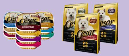 photo relating to Free Printable Cesar Dog Food Coupons referred to as Free of charge Cesar Pet dog Foodstuff Canadian Coupon! Canadian Freebies