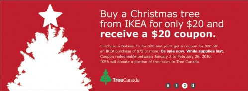 buy-a-christmas-tree2