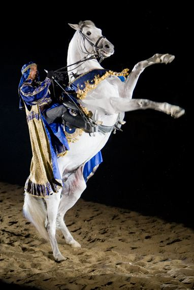 Medieval Times Art http://smartcanucks.ca/medieval-times-toronto-canada-buy-one-get-one-free-until-november-30th/
