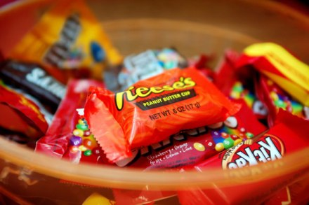 Organic Halloween Treats