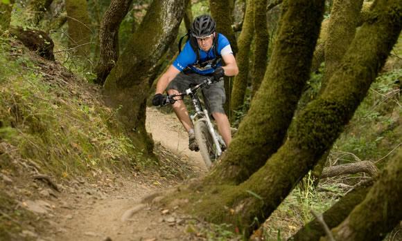 Civilian Bicycle Co. 29Er Luddite Singlespeed Side Angle - I Like regarding  Single Speed Mountain
