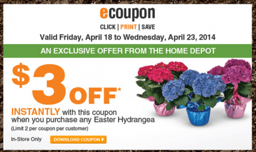 The Home Depot Garden Club Easter Coupons Save 3 When You Purchase Any Easter Hydrangea