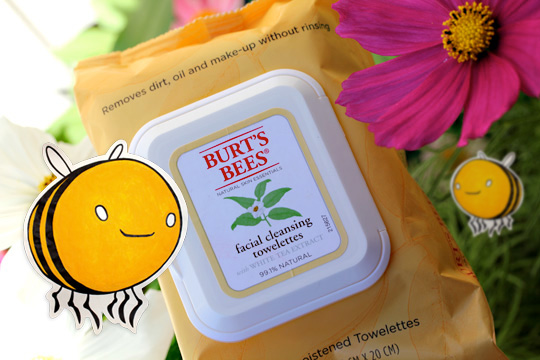 burts-bees-wipes