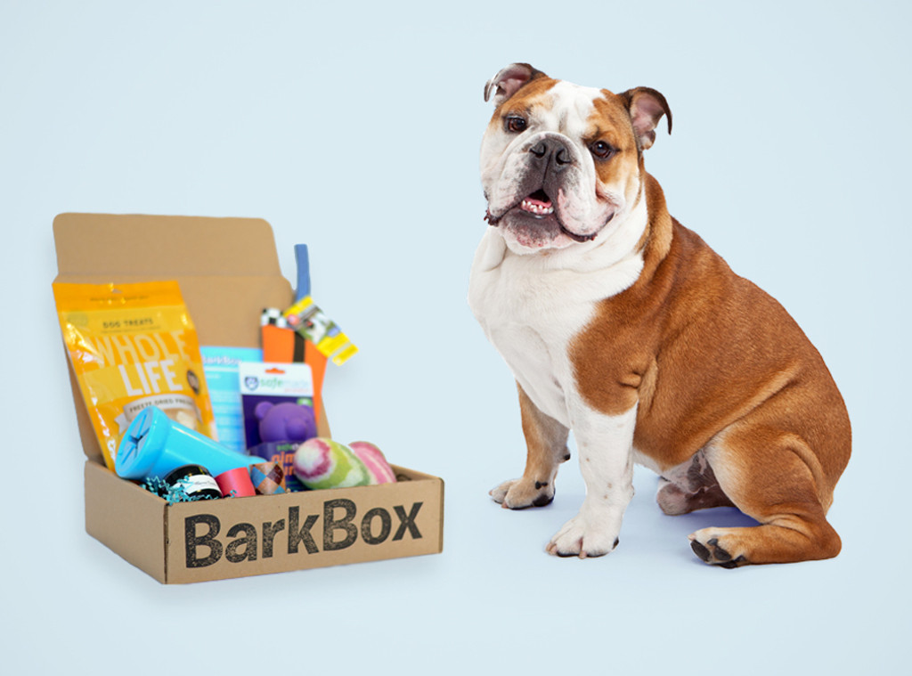 Dog Box Monthly Subscription Canada