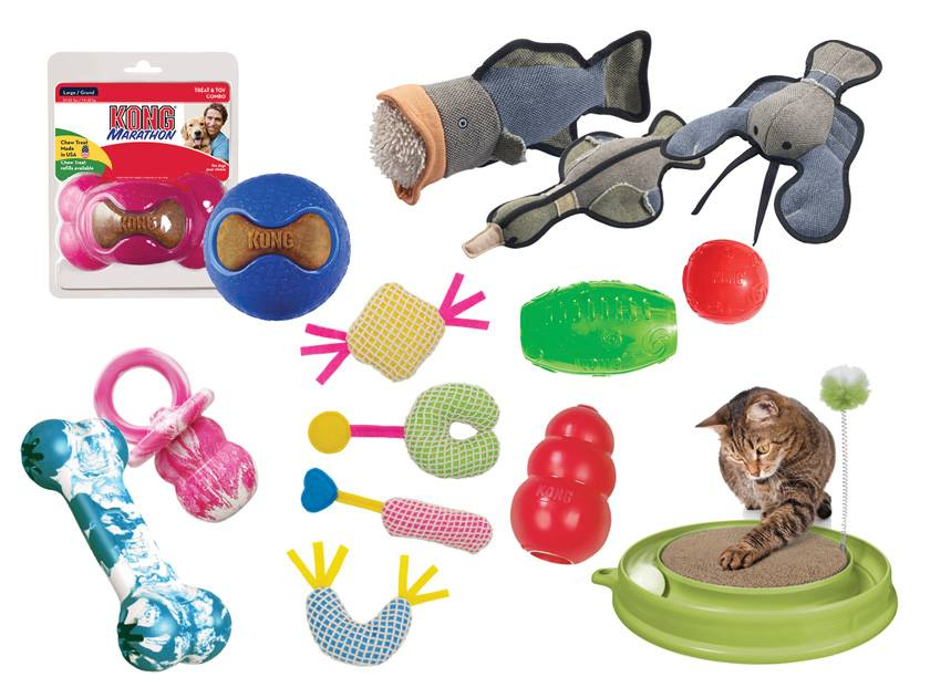 Cat toy freebies