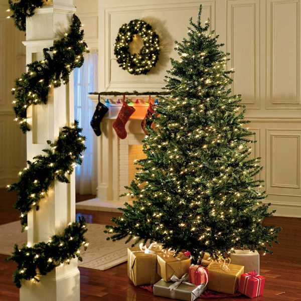 rcss - Real Canadian Superstore Canada Offers: Save 50% Off Christmas Trees