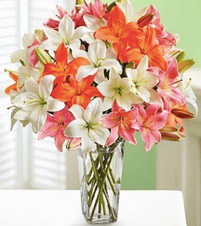 1800-flowers-canada-sale