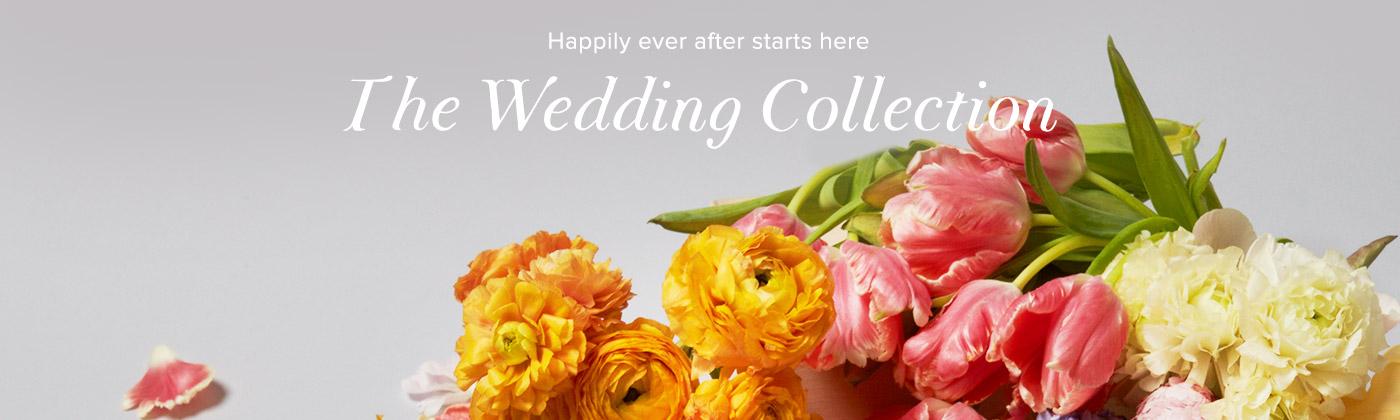 toms-canada-wedding-collection-promo-code
