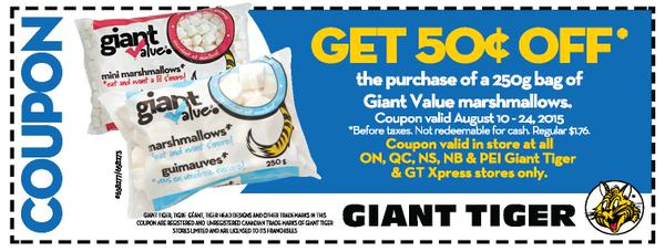 giant tiger coupon