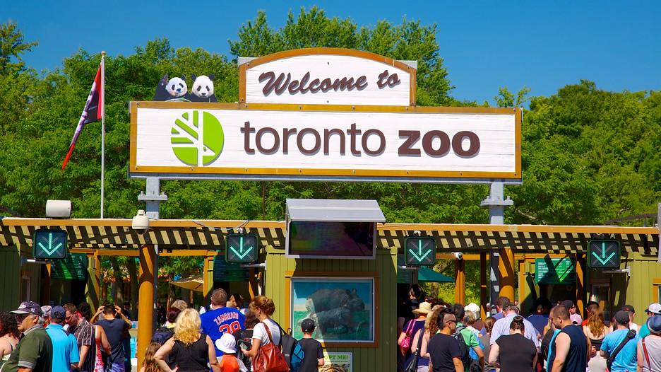 Metro toronto zoo coupons 2018