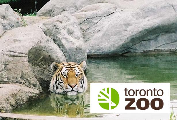 toronto-zoo-freebie