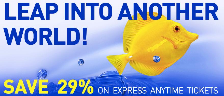 Tn aquarium tickets coupons