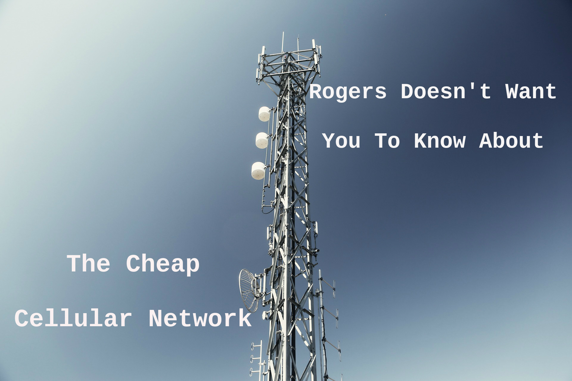 rogers network