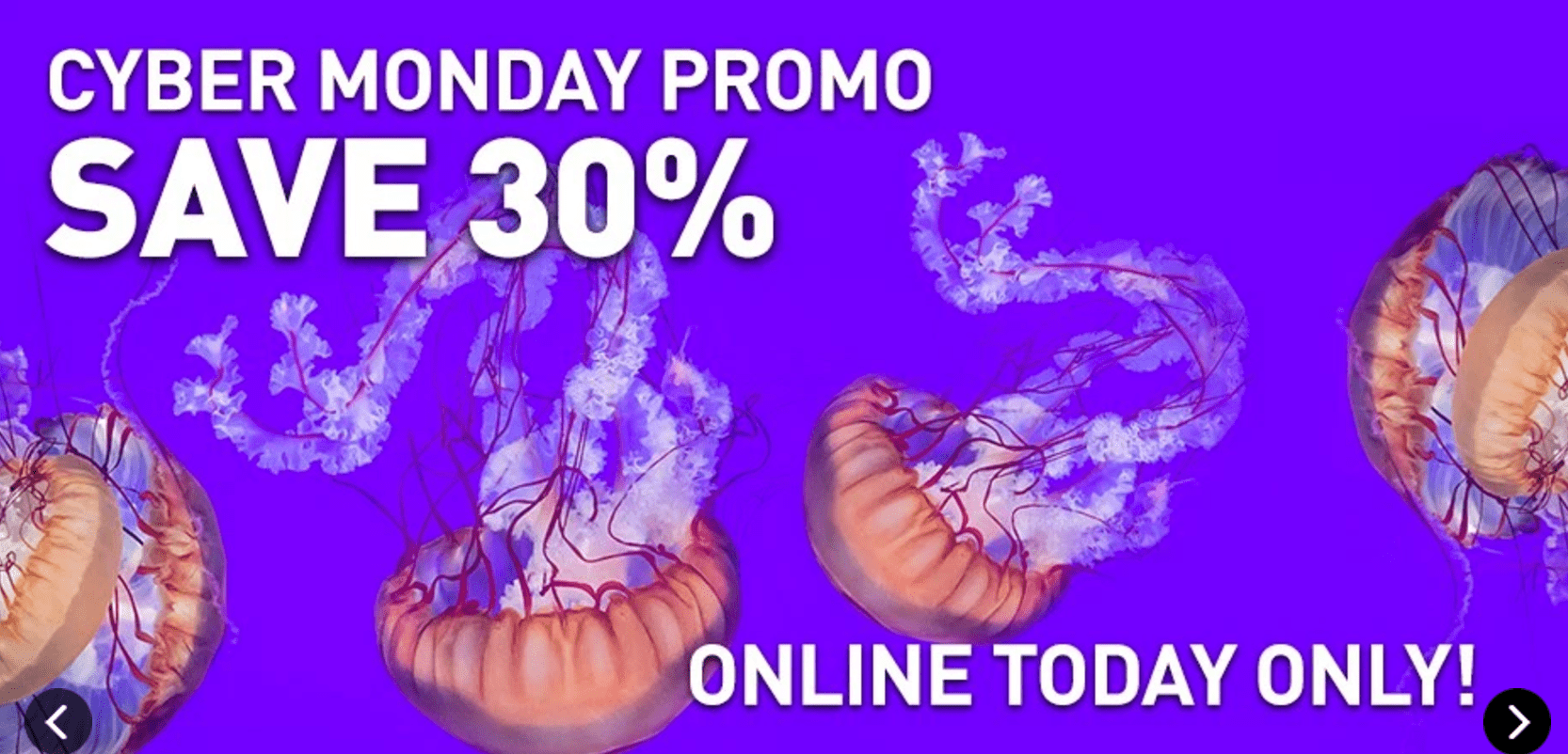 Ripley's Aquarium of Canada Cyber Monday *HOT* Deal: Save 30% Off Tickets, Buy Today & Use by End of Year!